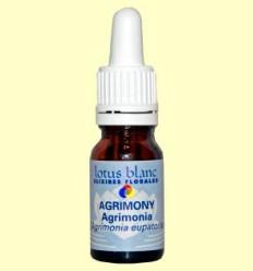 Agrimonia - Agrimony - Lotus Blanc - 10 ml