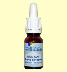 Civada Silvestre - Wild Oat - Lotus Blanc - 10 ml