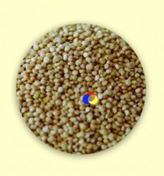 Quinua Reial Bio - Alternativa3 - 5 kg