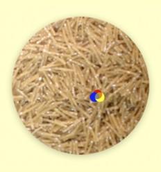 Fideus nº0 amb Quinua Bio - Alternativa3 - 5 kg