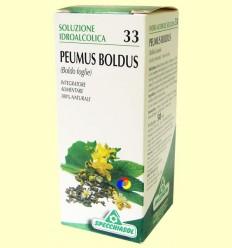 Boldo solució hidroalcohòlica - Specchiasol - 50 ml