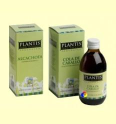 Suc Ginkgo ECO - Plantis - 250 ml