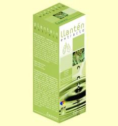 Extracte Plantatge - Plameca - 50 ml