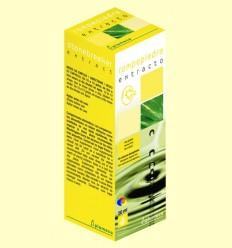 Extracte Rompepiedra - Plameca - 50 ml