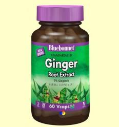 Gingebre Estandarditzat - BLUEBONNET - 60 càpsules vegetals