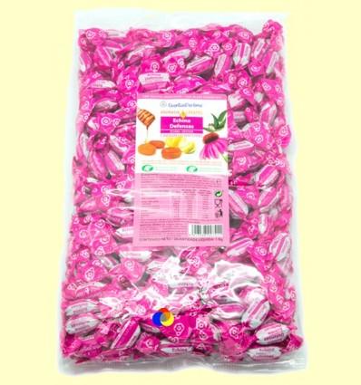 Aromatik Caramel Echina Defenses - Intersa - 1 kg