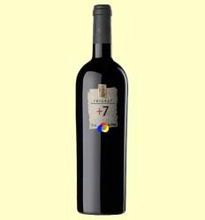 Vi +7 Ecològic - Pinord - 750 ml