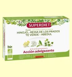 Quartet Te Verd Bio - Aprimant - Super Diet - 20 ampolles