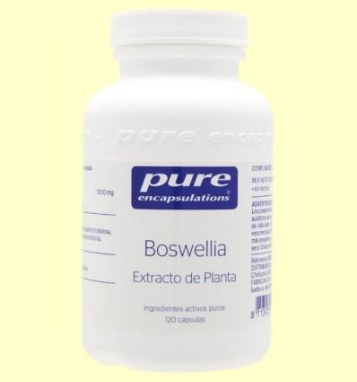 Extracte de Boswellia - Pure Encapsulations - 120 càpsules