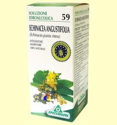 Echinacea solució hidroalcohòlica - Specchiasol - 50 ml ******