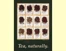 Te de Fruites amb Plantes - 100 grams