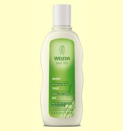 Xampú Equilibrant amb Blat - Weleda - 190 ml