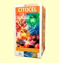 Citocel - Defenses - Lusodiete - 100 càpsules