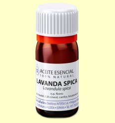 Oli Essencial Lavanda spica - Esential Aroms - 10 ml