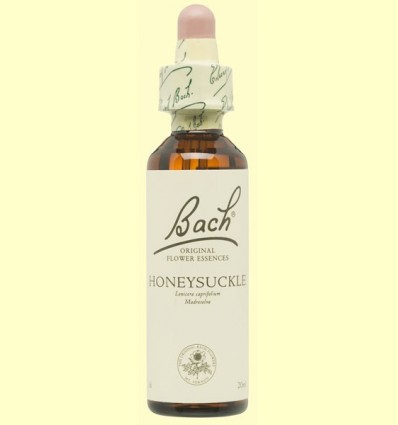 Lligabosc - Honeysuckle - Bach - 20 ml