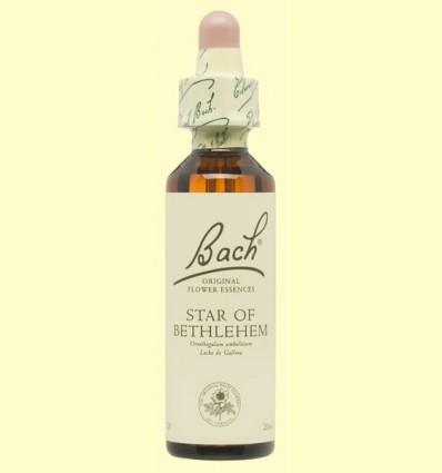 Estrella de Betlem - Star of Bethlehem - Bach - 20 ml