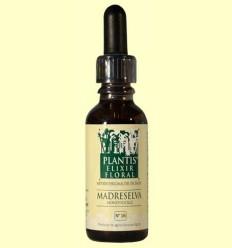 Lligabosc - Honeysuckle - Cultiu Ecològic - Plantis - 30 ml
