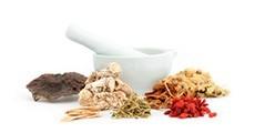 Plantes relacionades amb la medicina tradicional xinesa