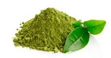 Tes i plantes en filtre