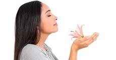Productes sistema respiratori
