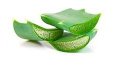 Productes amb base d'Aloe Vera